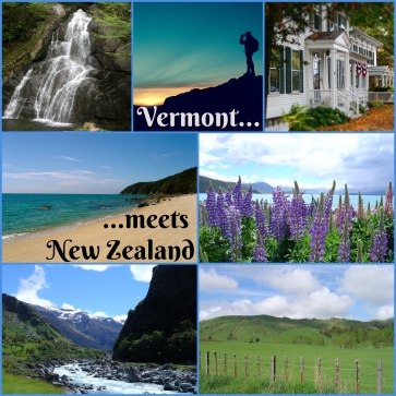 sots vt and nz collage 1